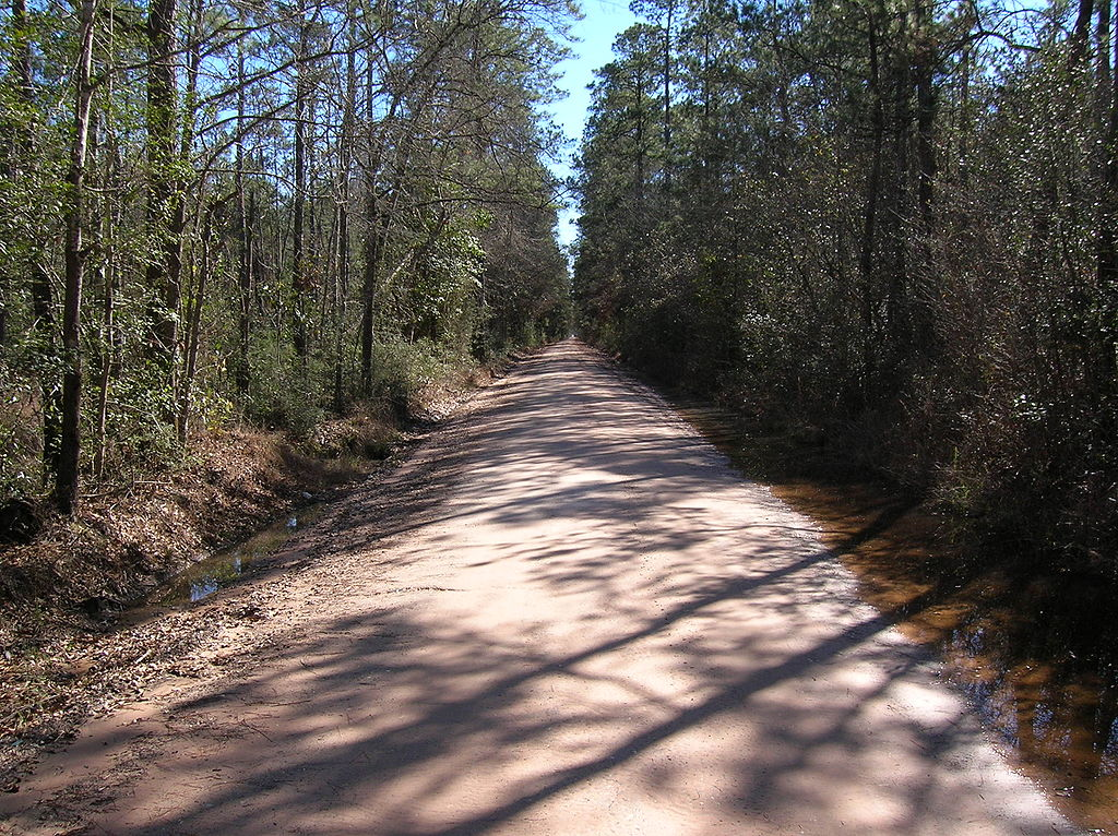 Bragg Road Hardin County, one of the most haunted texas places to visit