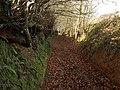 Bridleway, Broomfield - geograph.org.uk - 1129299.jpg