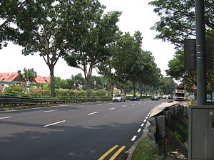 Bukit Timah Road - Bukit Timah Road westbound towards Bukit Timah, near the Singapore Botanic Gardens.