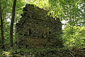 Burgruine Rundersburg - Innenhof 2.jpg