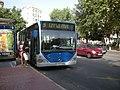 Bus.Palma.jpg