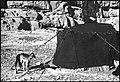 CH-NB - Persien, Persepolis- Nomaden - Annemarie Schwarzenbach - SLA-Schwarzenbach-A-5-04-203.jpg