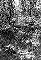 COLLECTIE TROPENMUSEUM In een verwaarloosde erosiegeul op het mergelterrein in het djatibos van Houtvesterij Noord Kradenen is een eenvoudige kunstgreep toegepast om (verdere) ravijnvorming te voorkomen West-Java TMnr 10010857.jpg