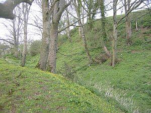 Cadbury Castle, Somerset - The ramparts
