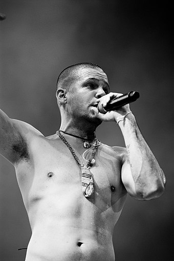 Calle 13 won the award in 2010. Calle13residente.jpg