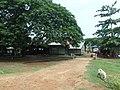 Camp - panoramio (12).jpg