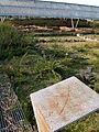Campamento Romano de Sobrado dos Monxes (8499456569).jpg
