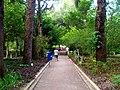 Campo de Sao Bento - panoramio (1).jpg