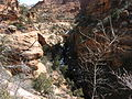 Canyon Overlook Trail, Zion National Park (5521126099).jpg
