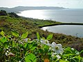 Cape and a Pond on the hill and flower - panoramio.jpg