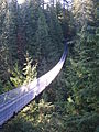 Capilano Suspension Bridge view.JPG