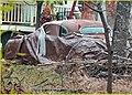 Car Forgotten 2-9-14 (12505307793).jpg