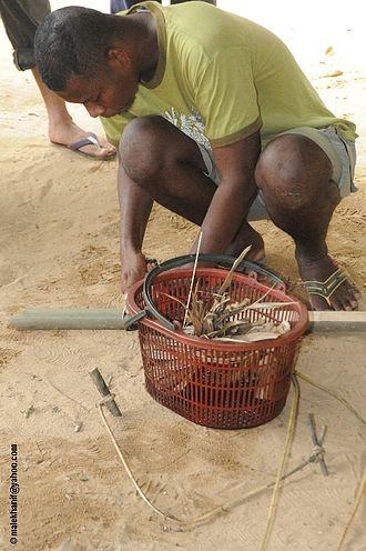 Batek people - A Batek man attempting to start a fire.