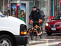 Cargo bike at Parliament and Queen, 2014 12 17 (2).JPG - panoramio.jpg