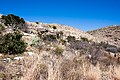 Carlsbad Caverns National Park and White's City, New Mexico, USA - 48344718116.jpg