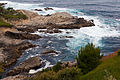 Carmel Highlands May 2011 004.jpg