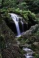 Cascada En Ciernes (54041084).jpeg
