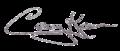 Casey Kasem (signature).png