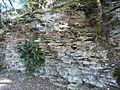 Castelnaud Lacoste parc strates calcaires.JPG