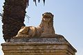 Castle of Good Hope - lion 2.jpg