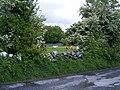 Cattle grazing - Cregaclare Demesne Townland - geograph.org.uk - 1314726.jpg