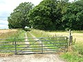 Centenary Way Footpath - geograph.org.uk - 1414465.jpg
