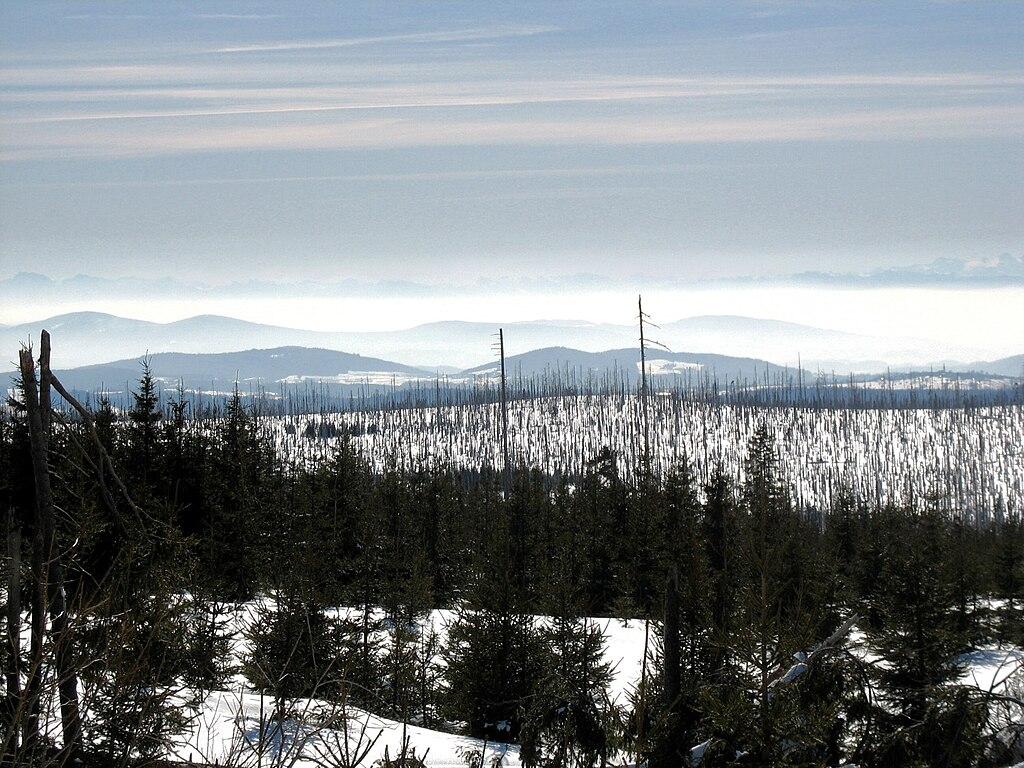La Vltava prend source dans ce décor de montagnes et de forêt du parc de Sumava à la frontière tchéco-allemande. Photo de Dingoa