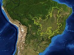 Mapa da ecorregião do Cerrado. Os limites da ecorregião mostrados em amarelo.
