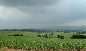 Chai Badan District - Plantation Valley in rainy season, Amphoe Chai Badan