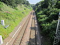 Chester to Manchester Line from Wood Lane, Runcorn (2).JPG