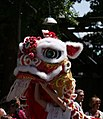 Chinese dragon in Canada Day Parade (698900115).jpg