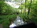 Clairmarais étang d'Harchelles (1).jpg