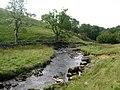 Clapham Beck - geograph.org.uk - 546885.jpg