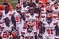 Cleveland Browns vs. Atlanta Falcons (29030980982).jpg