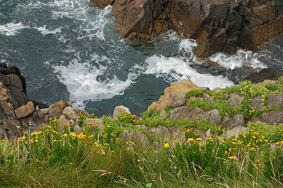 cliff line close to Brest (Bretagne), France