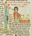 Codex Bodmer 127 144r Detail.jpg