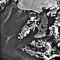 Columbia Glacier, Calving Terminus, Heather Island, February 29, 1980 (GLACIERS 1450).jpg