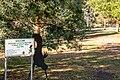 Community Riverwalk Branxholm.jpg