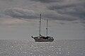 Congoola Cruise (Imagicity 507).jpg