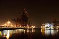 Container Terminal Burchardkai night.jpg