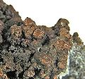 Copper-122894.jpg