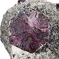 Corundum (Variety trapiche ruby)-649830.jpg