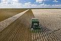 Cotton harvester in Batesville, Texas field - front view landscape.jpg