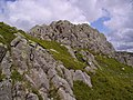 Crags and Bilberry - geograph.org.uk - 445638.jpg