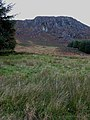 Craigencallie, Clatteringshaws Forest - geograph.org.uk - 262764.jpg