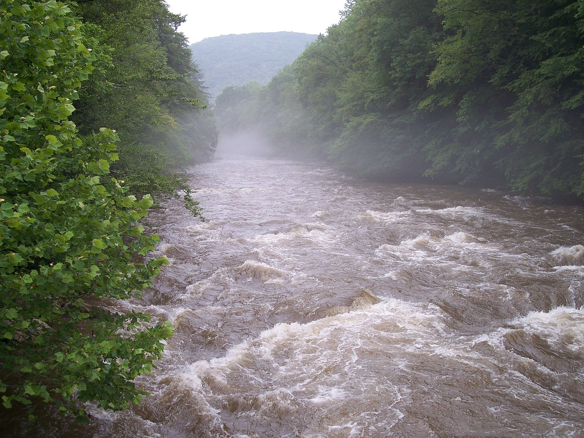 Cranberry river west virginia wikipedia for Fly fishing west virginia