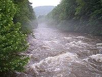 Cranberry River West Virginia.jpg