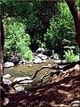 Creek, Oak Creek Canyon, AZ 7-30-13c (9510800448).jpg