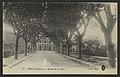 Crest (Drôme). - Avenue de la Gare (34528165136).jpg