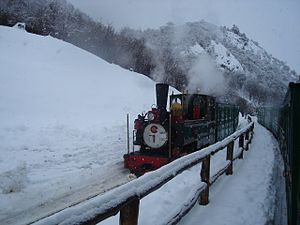 Tierra del Fuego National Park - Southern Fuegian Railway in winter
